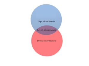 Inkontinencia kezelése, Intimtornához Biofeedback Gátizom tréner, enterococcus sp okozta húgyúti gyulladás, Escherichia coli baktériumok okozta fertőzés, inkontinencia, hólyaghurut,